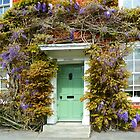 Windows and Door Framed with Wisteria  by hootonles