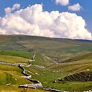 Yorkshire Dales and Dry Stone Walls by David Davies