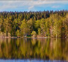 Landscape - Viking Camp - Sweden . by Brown Sugar . Favorites: 1 Views: 392 . Thanks ! by © Andrzej Goszcz,M.D. Ph.D