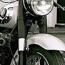 Vintage BSA by Lou Wilson