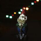 Gnome with square lights by Paul Budge