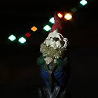 Gnome with diamond shaped lights by Paul Budge