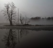 Misty Morning by Bill McMullen