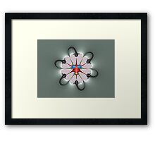 Corriparta Bug Framed Print