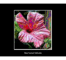 Pink Hibiscus with Enamel Special Effect Photographic Print