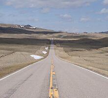 Prairie Road by Robbie Robinson