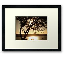 Pittwater Gold Framed Print