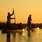 Okavango Sunset by Suzy Harrison