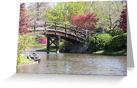 Japanese Garden in the Spring time. by Paula Betz