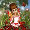 Poppy The Meadow Fairy by Moonlake