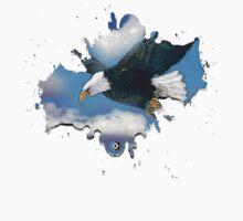 bald eagle by arteology
