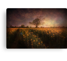 Timeless Canvas Print