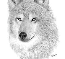 The Wolf by rosannamaria