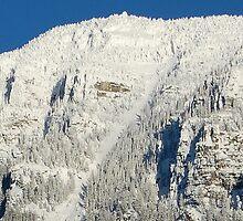 Mount Brown- Glacier Park, Montana by Breanna Stewart