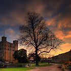 Castle Grounds by Mike Matthews