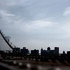 View from a Brooklyn bridge ledge by contradirony
