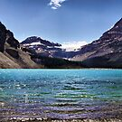 From the Shore of Bow Lake by Vickie Emms