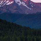 Mount Shasta by Anne McKinnell