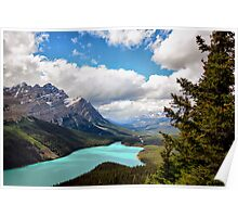 Peyto Lake, Banff NP, Alberta, Canada Poster