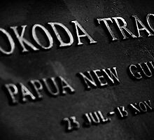 Kokoda Tracks by Steve Tognazzini