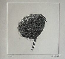 Bird etching by Valdas Misevičius