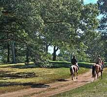 Morning Ride:  Appleton Farm  (Hamilton, Mass.) by john forrant