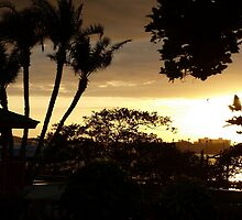 Paradise gained by ♥⊱ B. Randi Bailey