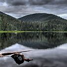 Ward Lake Afternoon by Mike Gates