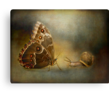 Brian asked the butterfly...... Canvas Print