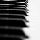 Ivories by KirstyStewart