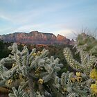 Enjoy Sedona 2Day by lifeisgoodheidi