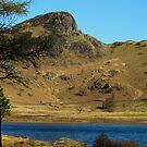 Blea Tarn towards Langdale Pikes by John Hare