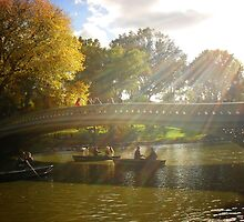 Sunlight and Boats - Bow Bridge Central Park by Vivienne Gucwa