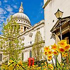 Spring At St Paul`s - London by Colin J Williams Photography