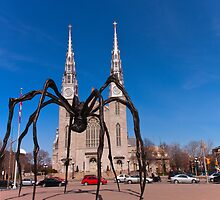 Big Spider - Ottawa, Ontario Canada by Josef Pittner