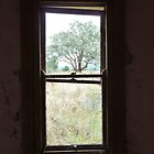Derelict House at Mudgee - Window Vista  by DashTravels