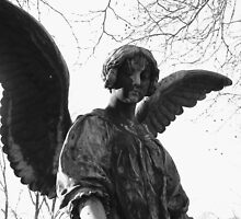 Guardian Angel by hamti
