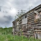Old Barn by Paul Hickson