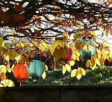Autumn Leaves and Lanterns by Sandra Baxter