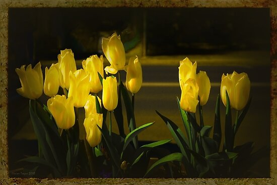 Just Yellow by Elaine Teague