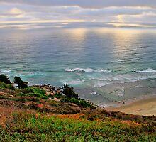 Sea Coast Chile by Daidalos