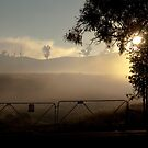 Foggy Morning... by John Vandeven