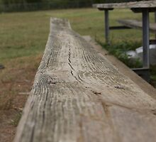 Bench on a Baseball Field by KateCraig