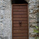 Sgurgola Door in Italy  2 by Warren. A. Williams