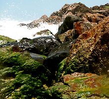 Moss on the Rocks by Jason Dymock Photography