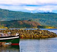 Cowichan Bay View Over the Water by Daphne Eze