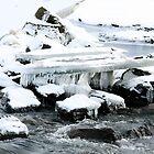 Salmon River by Þórdis B.