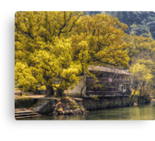 Tree by the River Canvas Print