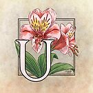 U is for Ulster Mary by Stephanie Smith