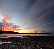 Terrigal Tales by Steve Tognazzini